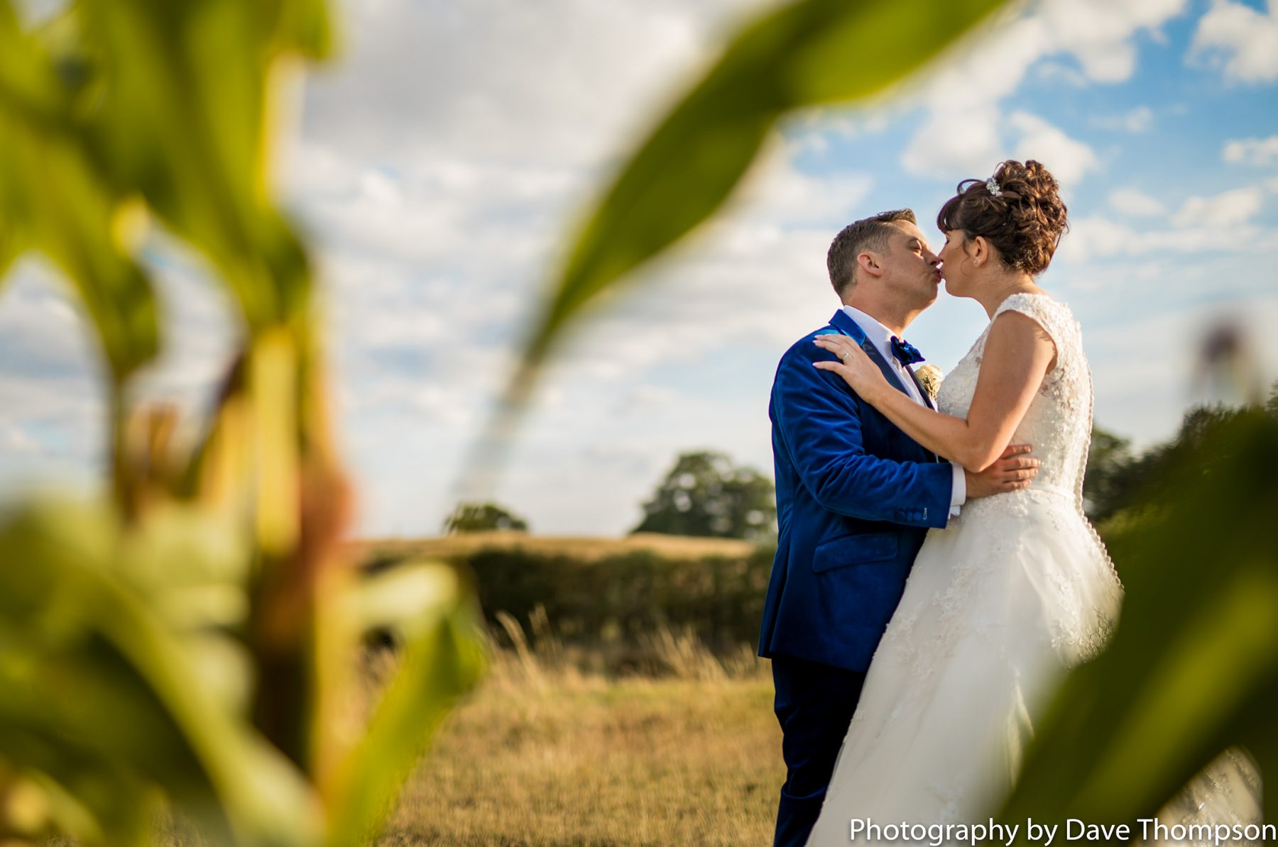The bride and groom together in a corn field at Sandhole Oak Barn