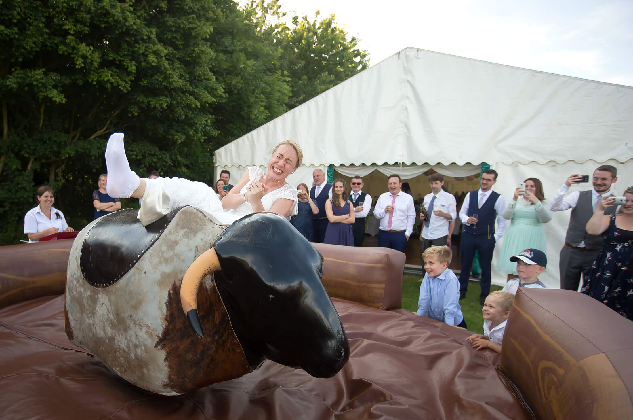 A bride falls from a rodeo bull at her wedding party