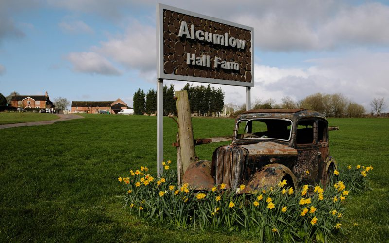 The old car surrounded by flowers on the drive up to Alcumlow Wedding Barn