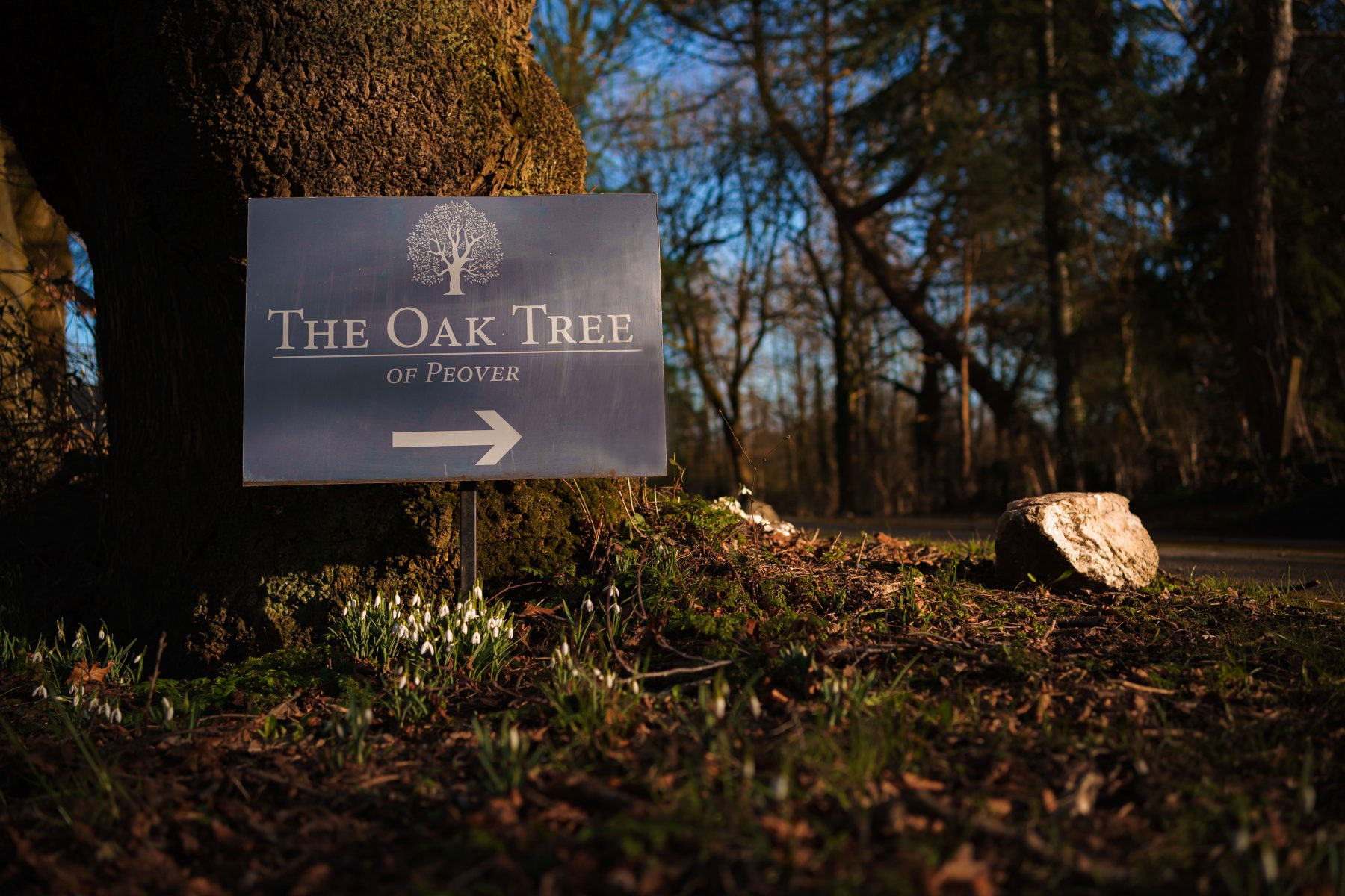 The sign at the driveway at The Oak Tree of Peover